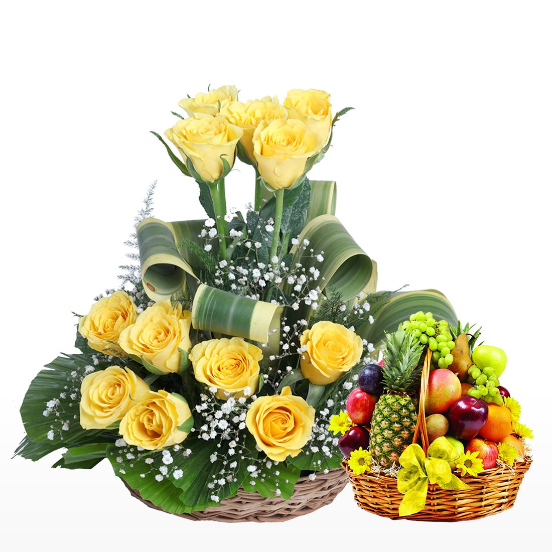 Send gifts to ahmedabad online gift shop in ahmedabad gujarat flowers with fruits izmirmasajfo