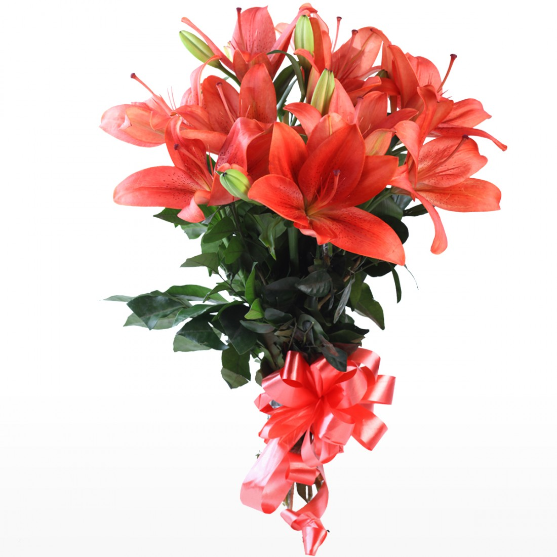 Hand Tied Bunch Of 6 Red Lilies