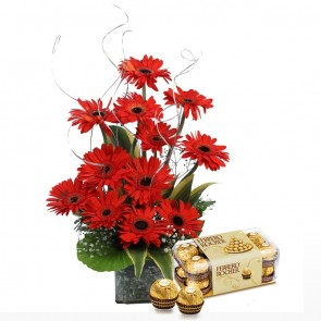 12 Red Gerberas in Small Vase With Chocolates