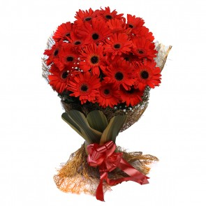 Bouquet of 20 Red Gerberas