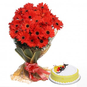 Bouquet of 25 Red Gerberas with Cake