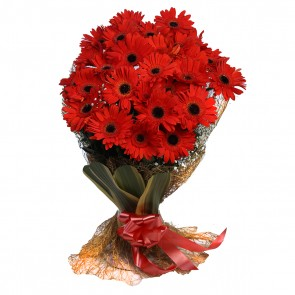 Bouquet of 25 Red Gerberas