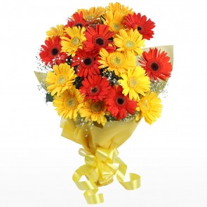 Bouquet of 20 Mix Gerberas