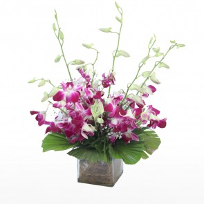 8 Pink Orchids in small vase
