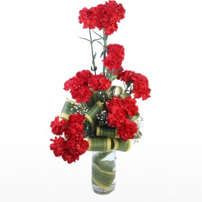 25 Red Carnations in Medium Vase