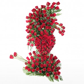 Endless Love of 200 Red Roses