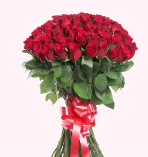 Send Roses for your Loved Ones